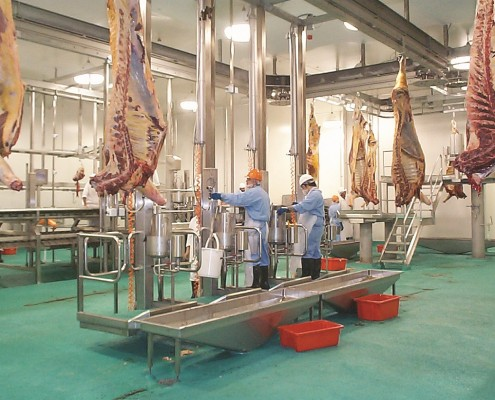 Rise and Fall platforms - Meat industry