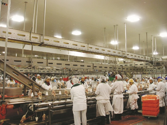 Floor Cleaning Solutions >> Abattoir Conveyors and Meat Processing Equipment | PH ...